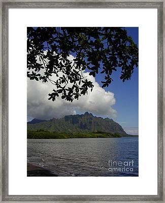 Waiahole Beach Park Framed Print by Mark Gilman