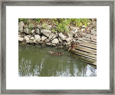 Wait For Me Framed Print by Corinne Elizabeth Cowherd