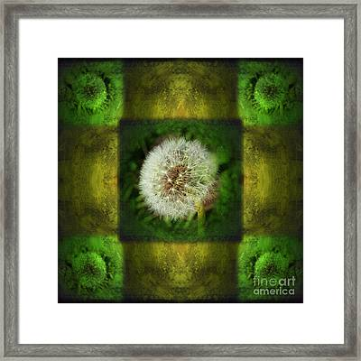 Waiting For A Wish Framed Print by Laura Iverson
