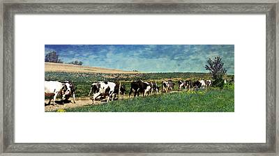 Waiting In Line Framed Print by Kathy Jennings