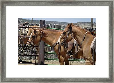 Waiting To Work Framed Print by Juls Adams