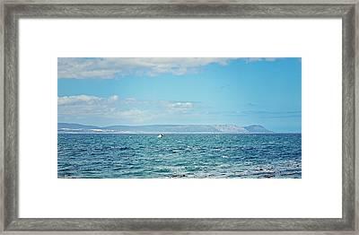 Wale Watching Framed Print by Benjamin Matthijs
