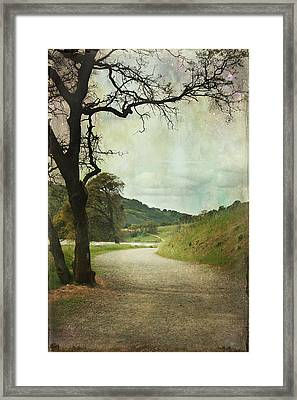 Walk Of Life Framed Print by Laurie Search