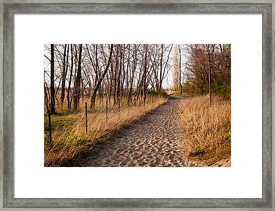 Walk The Path Framed Print by At Lands End Photography
