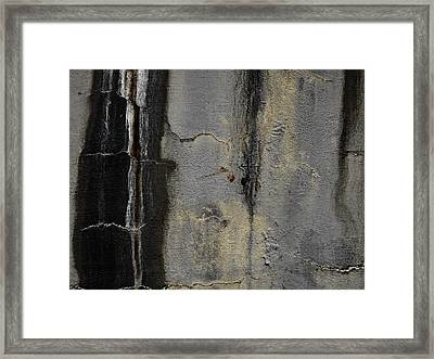 Wall Texture Number 5 Framed Print by Carol Leigh
