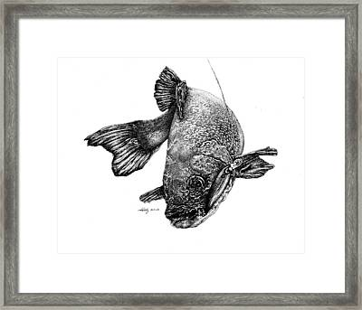 Walleye Framed Print by Kathleen Kelly Thompson