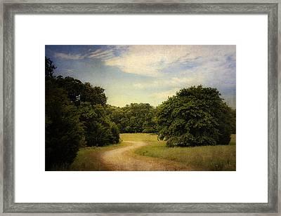 Wandering Path II Framed Print by Tamyra Ayles