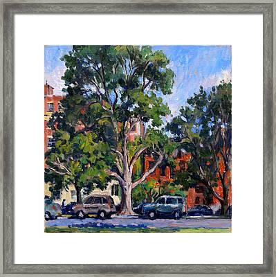 Washington Park Albany Framed Print by Thor Wickstrom