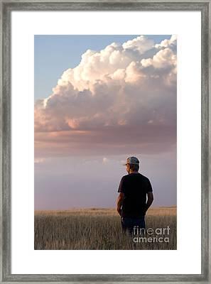 Watching The Grain Grow Framed Print by Cindy Singleton