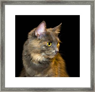 Watching The Sunset Framed Print by Steven Richardson
