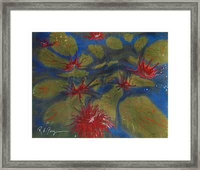 Water Lilly Pond Framed Print by Roger Ferguson