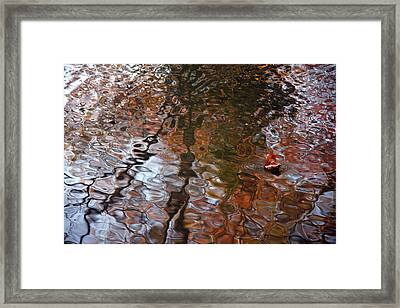 Water Serenade Framed Print by Ed Smith