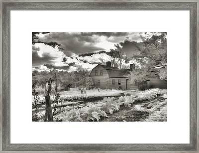 Watercolor In Black And White Framed Print by Joann Vitali