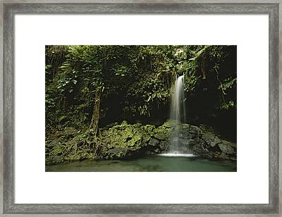 Waterfall And Emerald Pool In A Lush Framed Print by Tim Laman