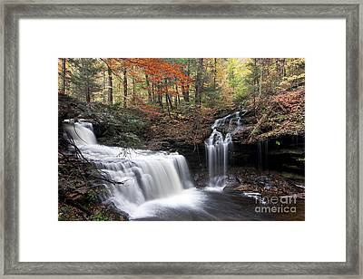 Waterfalls At Ricketts Glen State Park Pa Framed Print by Robert Wirth