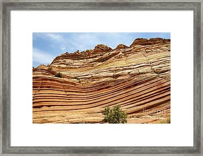 Wave Sculptured Sandstone Framed Print by Scotts Scapes