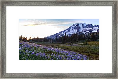 Waves Of Purple Framed Print by Mike Reid