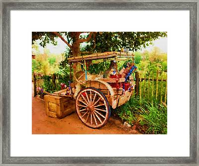 Way Of Life Framed Print by Carmen Del Valle