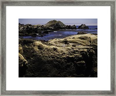 Weathering The Sea Framed Print by Jo-Anne Gazo-McKim