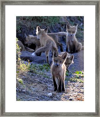 Welcome Framed Print by AnnaJo Vahle