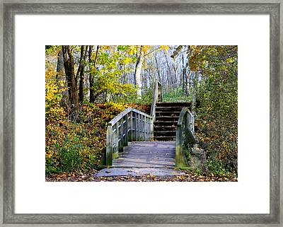 Welcome To My World Framed Print by Kay Novy