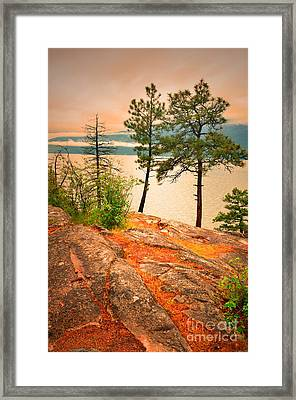 Welcoming The Morning Framed Print by Tara Turner