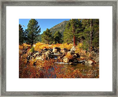 West Fork Of The Carson River Fall Colors Framed Print by Scott McGuire