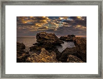 Westcoast Wonders Framed Print by Dave Kelly