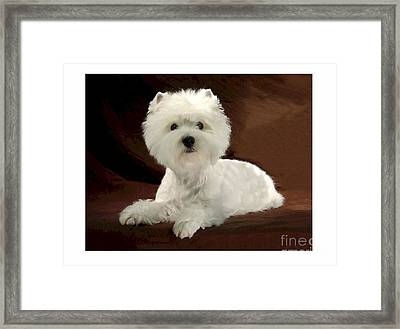 Westie 315 Framed Print by Larry Matthews