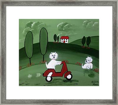 Westies With The Scottie Scooter Framed Print by Susan McLean Gray