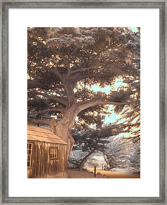 Whaler's Cabin Framed Print by Jane Linders
