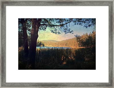 When I'm In Your Arms Framed Print by Laurie Search