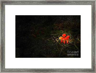 When Ye Go Away Framed Print by The Stone Age