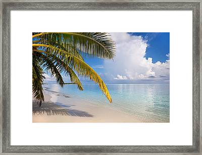 Whispering Palm On The Tropical Beach Framed Print by Jenny Rainbow