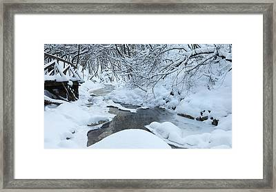 Whist Of December Framed Print by Ferenc Farago - Photograph Art