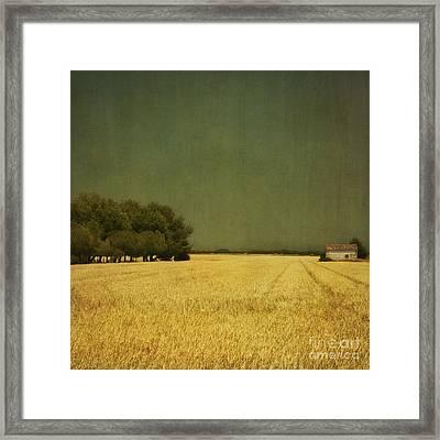 White Barn Framed Print by Paul Grand