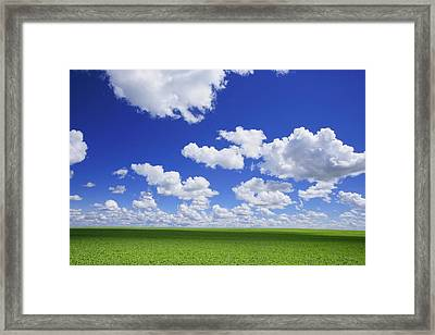 White Clouds In The Sky And Green Meadow Framed Print by Don Hammond