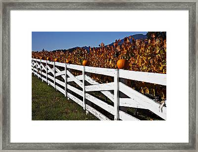 White Fence With Pumpkins Framed Print by Garry Gay