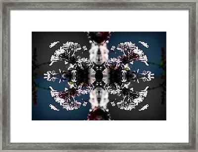 White Flowers Framed Print by Sumit Mehndiratta
