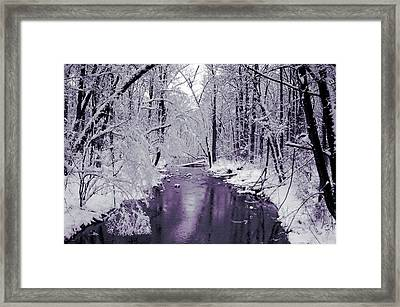 White Forest Framed Print by Jan Lakey