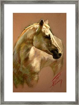 White Horse Framed Print by Ylli Haruni
