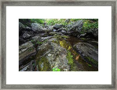 White Oak Creek Framed Print by Rick Berk