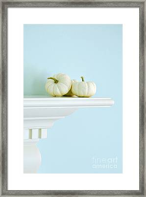 White Pumpkins Framed Print by HD Connelly