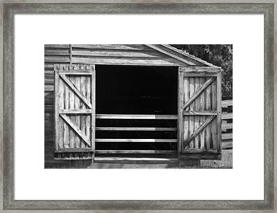 Who Opened The Barn Door Framed Print by Teresa Mucha
