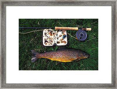 Wild Brown Trout And Fishing Rod Framed Print by Axiom Photographic