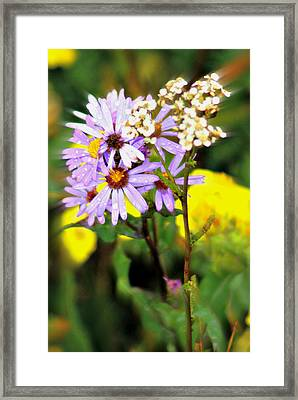 Wild Floral Framed Print by Marty Koch