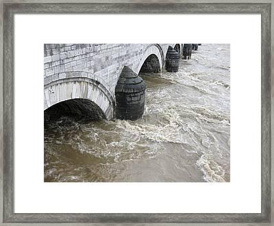 Wild Meuse Framed Print by Nop Briex