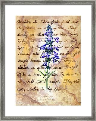 Wild Sage Framed Print by Linda Pope