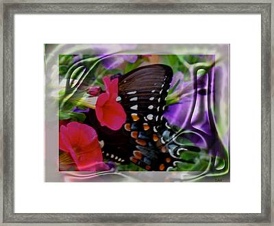 Wild Wings Butterfly Framed Print by Debra     Vatalaro