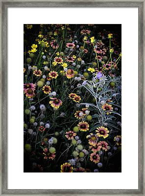 Wildflowers 5 Framed Print by Mauricio Jimenez